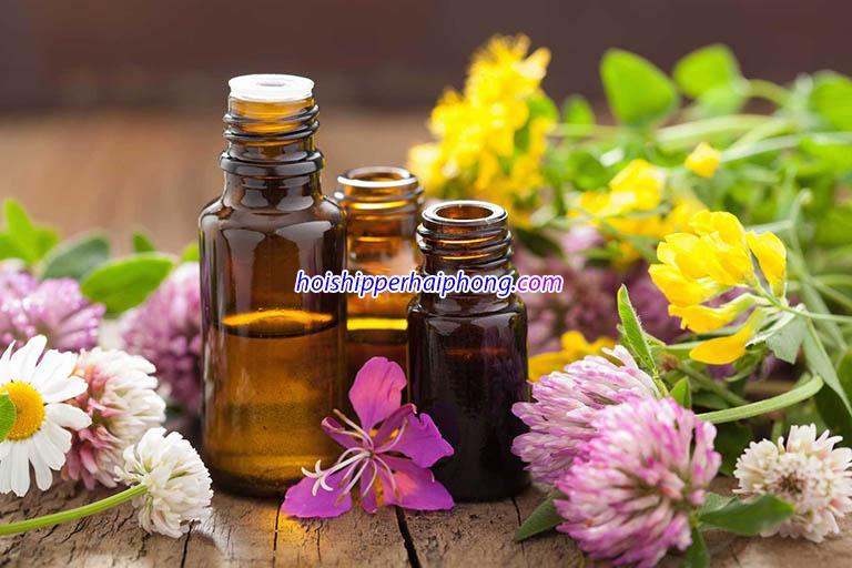 Top 10 loại nước hoa vùng kín tại Hải Phòng bán chạy nhất
